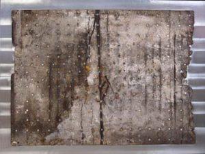 Pic09 cidipe 97x130 cm - Técnica mixta sobre zinc 2003